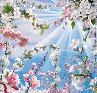 Весна 280*290см (24 листа)